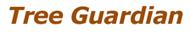 Tree Guardian - consolidamento dinamico