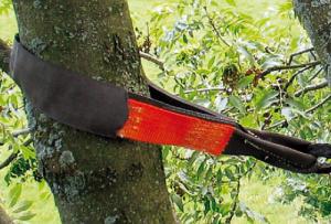 Fascioni asolati TREE SAVE